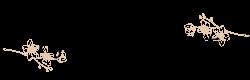 ヒプノインフィニティ湘南 ヒプノセラピー(催眠療法)鎌倉&藤沢